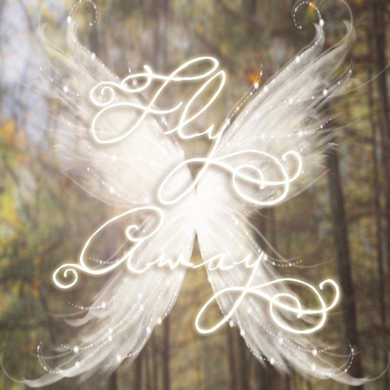 fly_away_fairy_wings